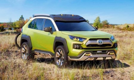 2019 Toyota RAV4 Adventure Model